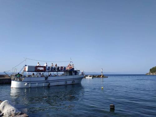 Lesvos boat trips